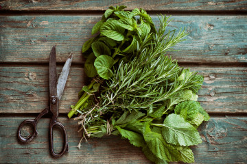 Fresh Herbs on table.