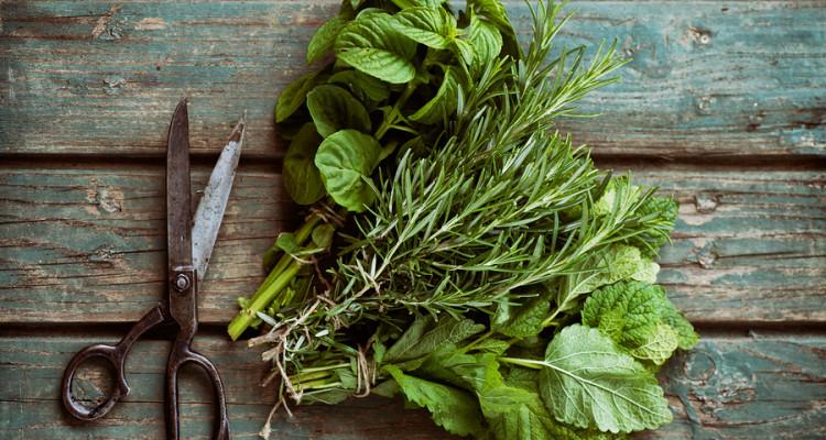 Fresh Herbs on table.