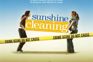 sunshine-cleaning poster