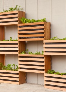 Vertical garden ideas 1
