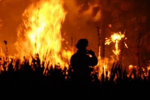 Knysna fires