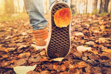 cheap things to do in autumn